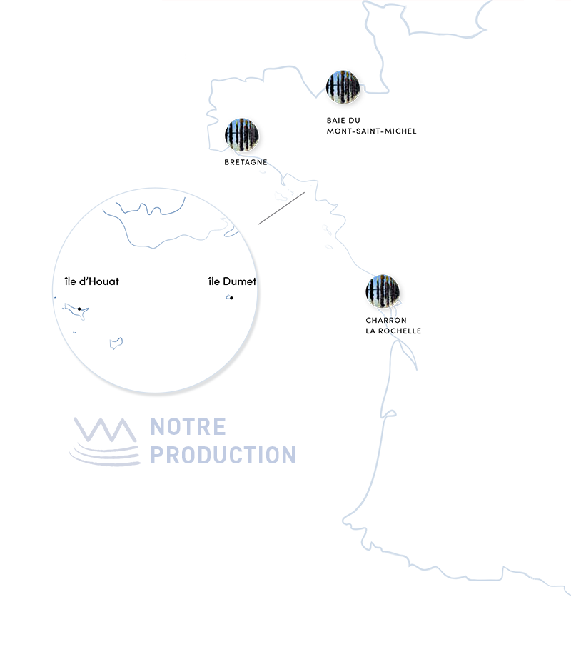 Carte de production avec Logo